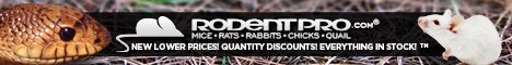 RodentPro.com - feeders for less!