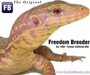click here for Freedom Breeder