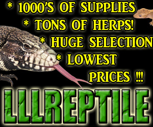 Click here for LLL Reptile & Supply