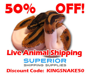 Click here to save on reptile shipping