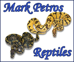 click here for Mark Petros Reptiles