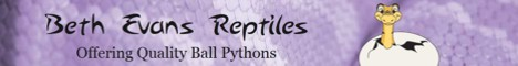 click here for Beth Evans Reptiles
