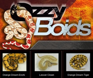 click here for Ozzy Boids