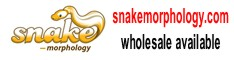Click here for Snake Morphology