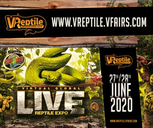 VReptile International Expo - Virtual Expo Online June 27 and 28