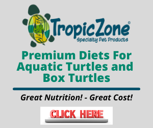 Aquatic Turtle Diets and Professional Fish Foods