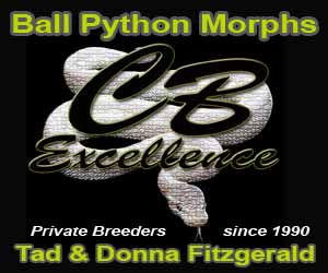 click here for Captive Bred Excellence - Tad Fitzgerald