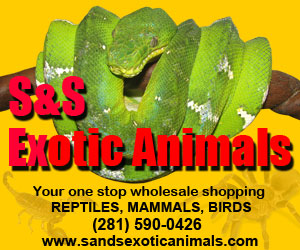 click here for S and S Exotic Animals