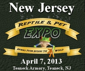 click here for the New Jersey Reptile & Pet Expo